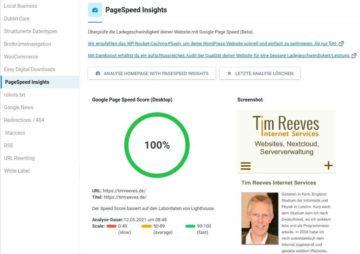 Google Pagespeed Insights für timreeves.de